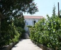 Apartments Villa Jadro